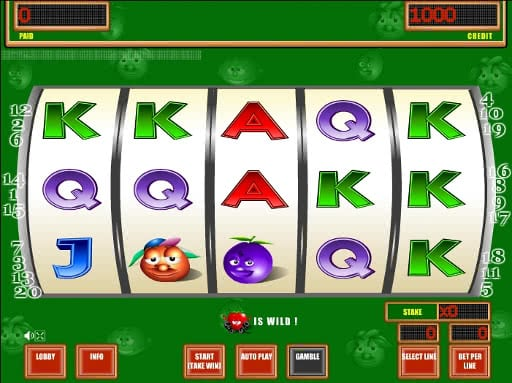Gamble Crazy Fruits slots free machine